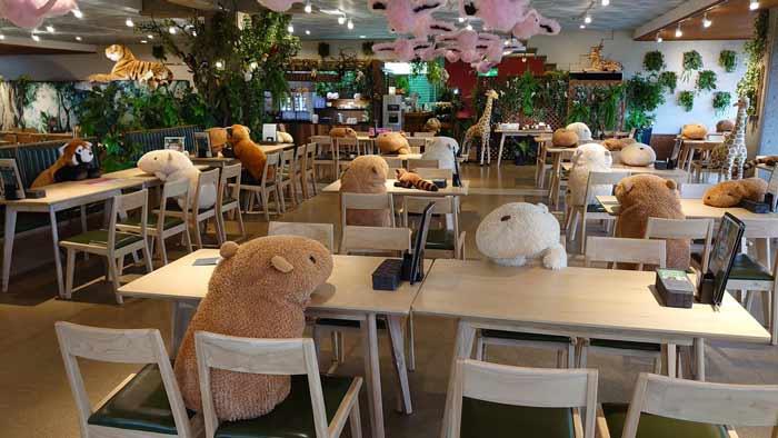 japan socijalna distanca