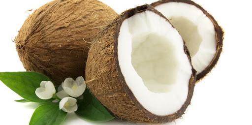 Gde raste kokosov orah?