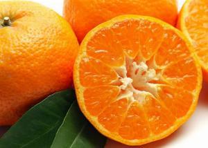 Gde raste mandarina?
