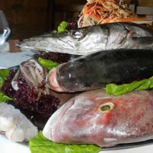 restoran gusti mora