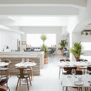 restoran faro beograd, fish zelenish beograd