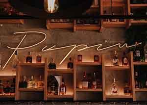 Pupin pub